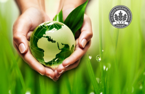 LEED Service and Reporting